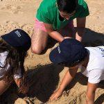 Campo de Férias de Verão  –Infância – Programa de Atividades