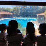 Campo de Férias de Verão  – Pré Escolar – Programa de Atividades